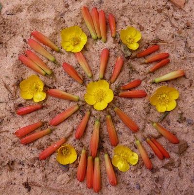 Mandala hecho con flores